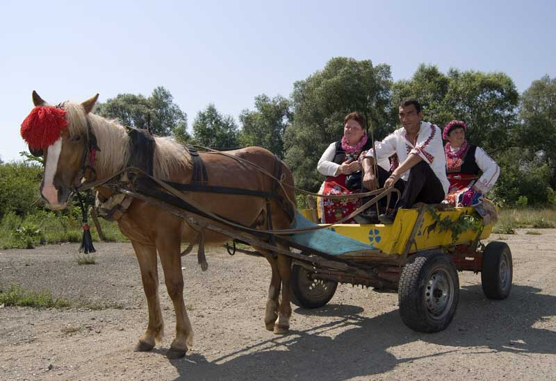 bulgaria-lady-and-bulgarian-man-in-traditional-costume-riding-on-horse-and-cart-at-the-kazanlak-rose-festival-web-081.jpg?w=800